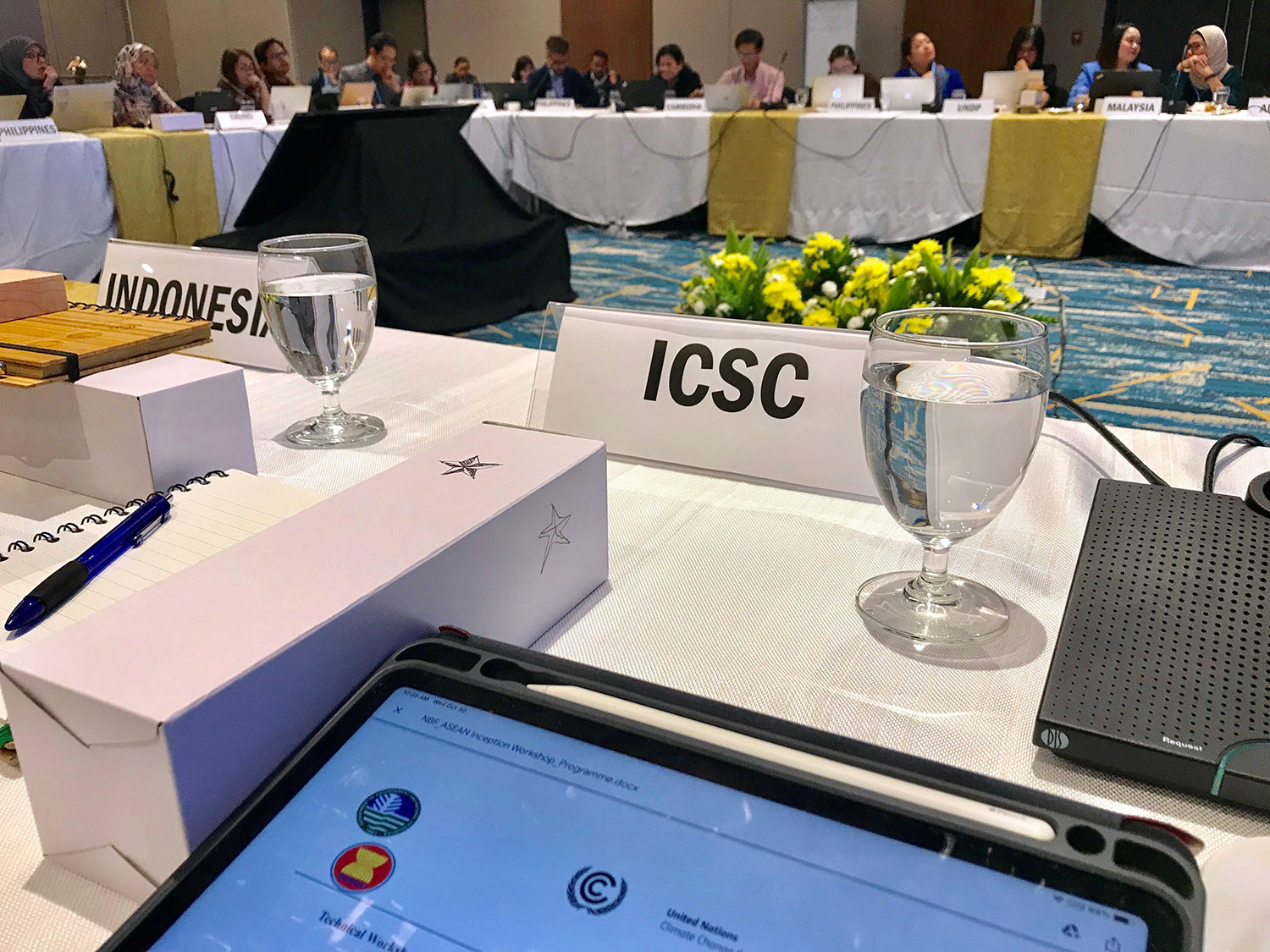 ICSC shares climate finance insights in UNFCCC-ASEAN workshop