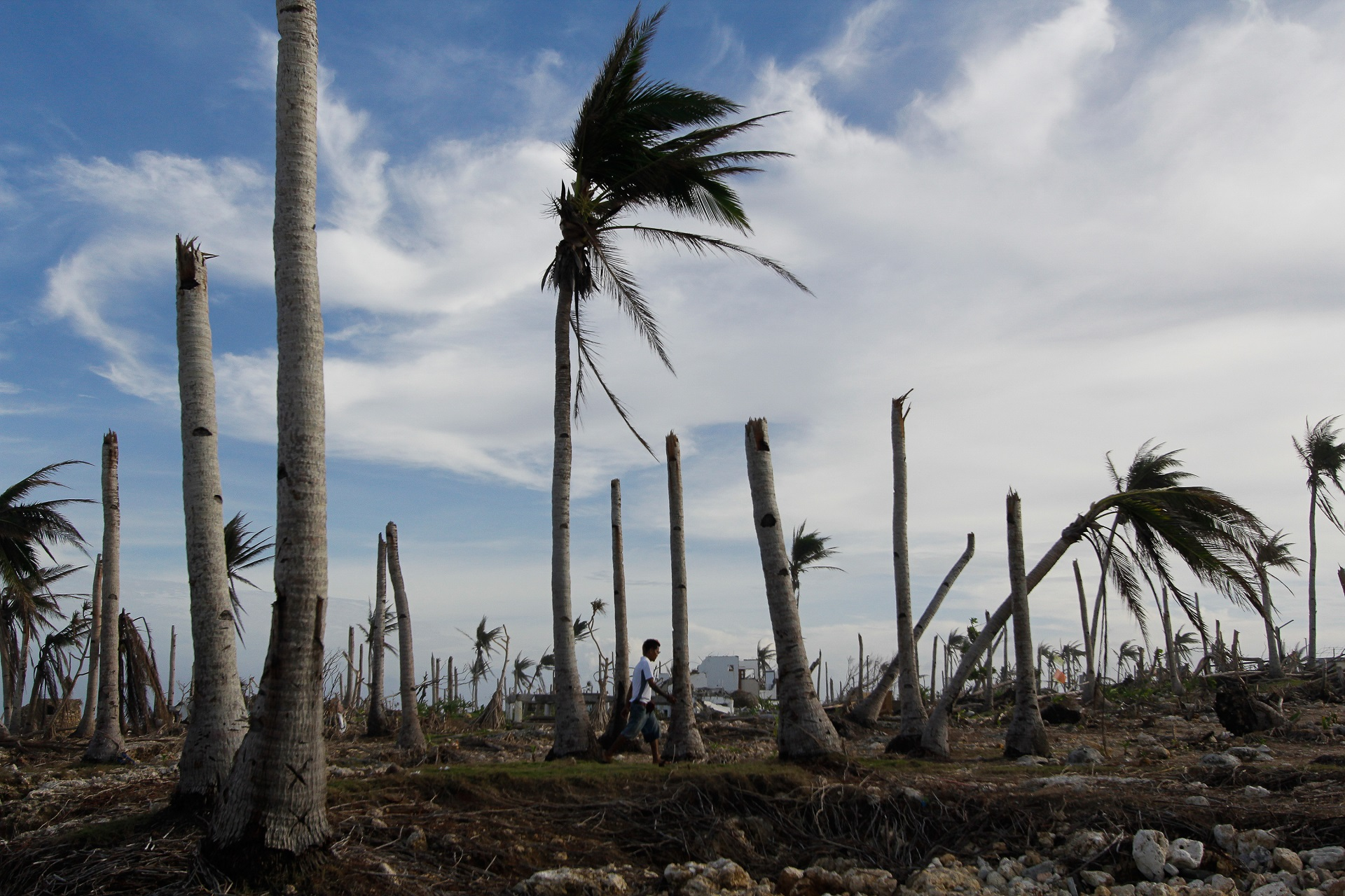 IMF urged to create new trust to bolster work on climate resilience